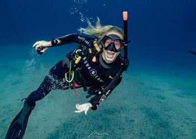 Dive(5)